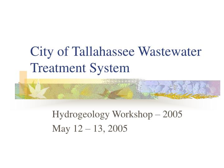 City of tallahassee wastewater treatment system l.jpg