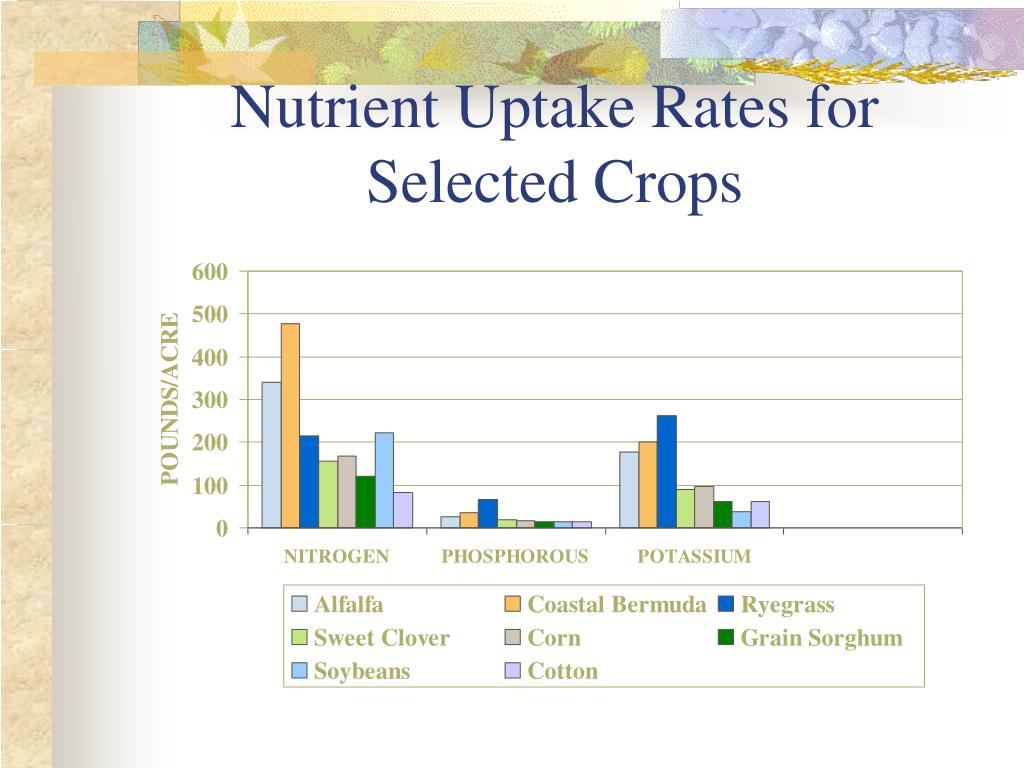 Nutrient Uptake Rates for Selected Crops