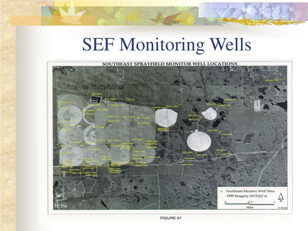 SEF Monitoring Wells