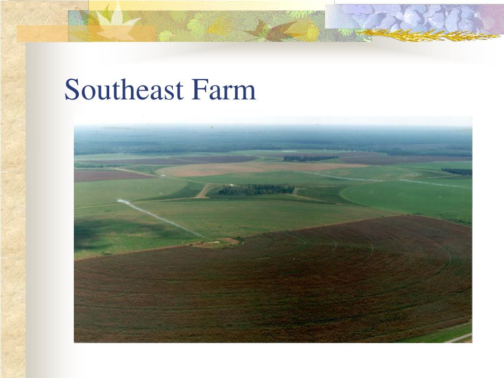 Southeast Farm