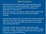 work practices30