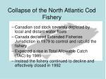 collapse of the north atlantic cod fishery