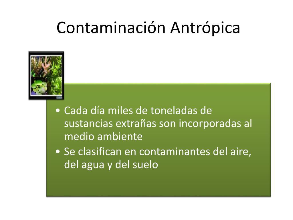 Contaminación Antrópica