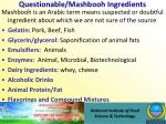questionable mashbooh ingredients