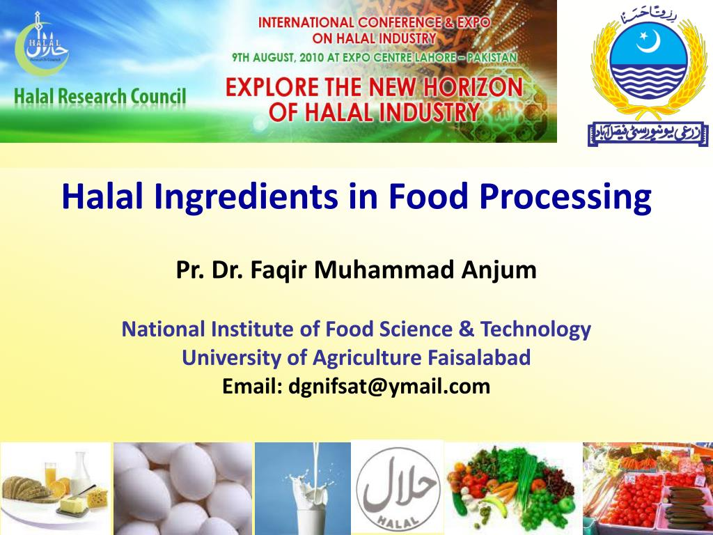 Halal Ingredients in Food Processing