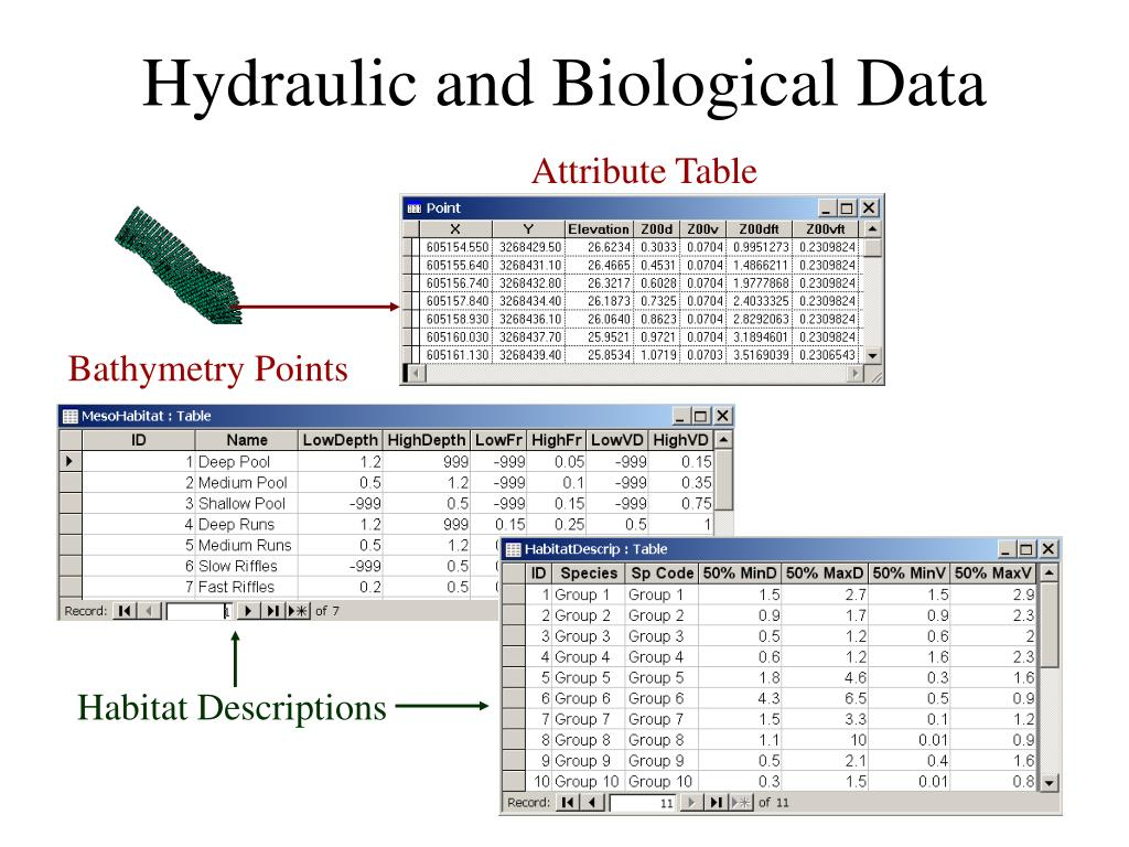 Hydraulic and Biological Data