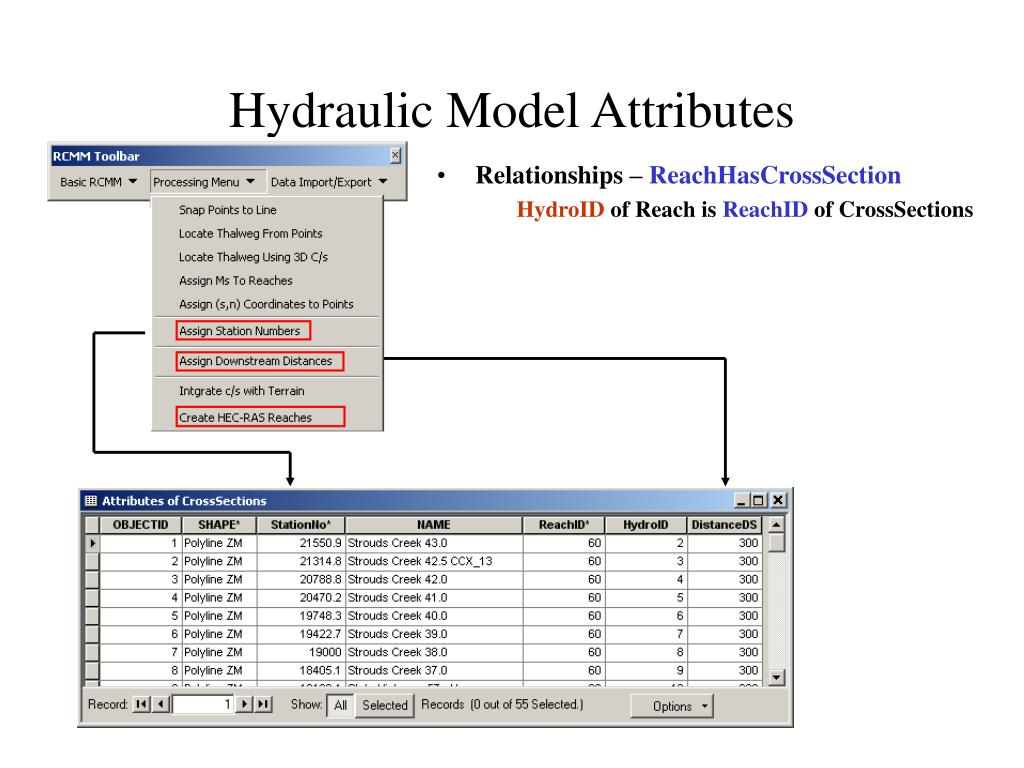 Hydraulic Model Attributes