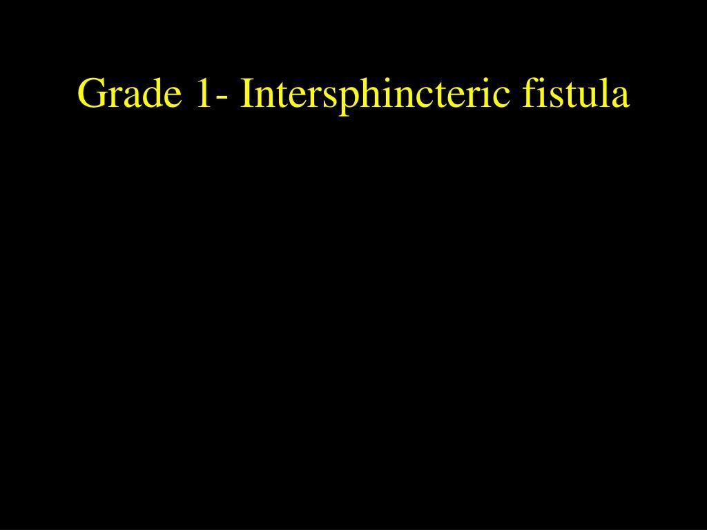Grade 1- Intersphincteric fistula