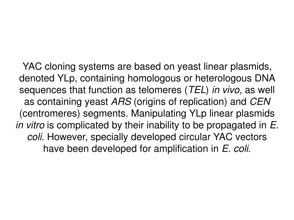 YAC cloning systems are based on yeast linear plasmids, denoted YLp, containing homologous or heterologous DNA sequences that function as telomeres (