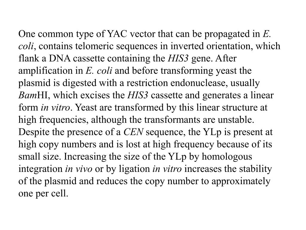 One common type of YAC vector that can be propagated in