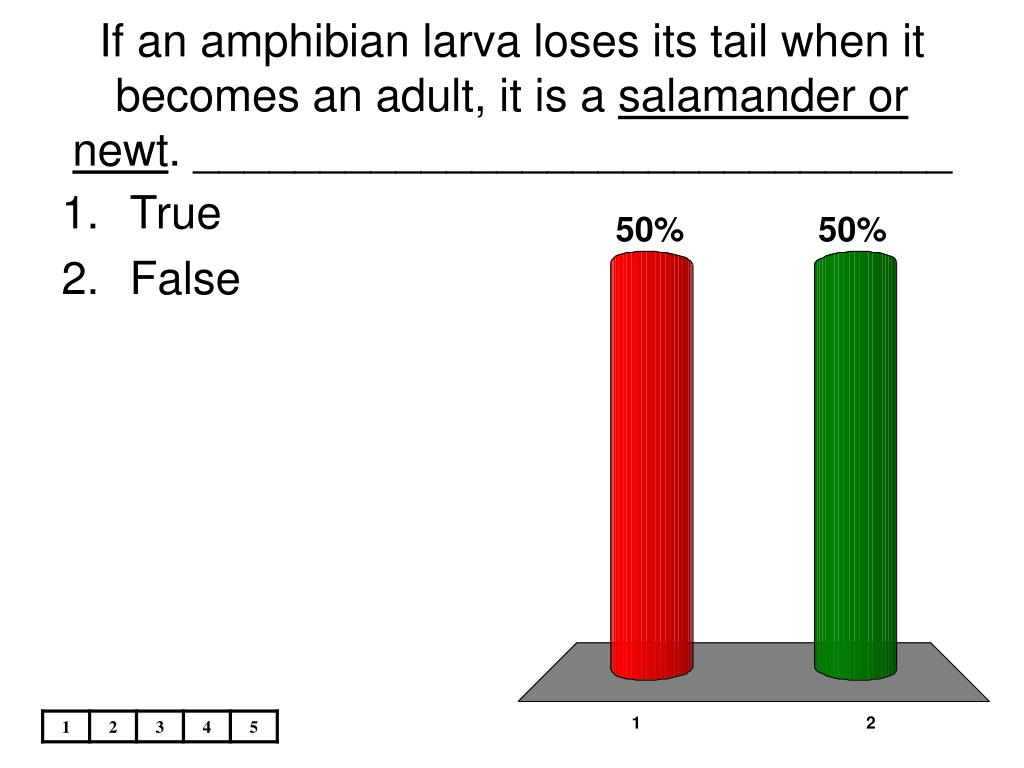 If an amphibian larva loses its tail when it becomes an adult, it is a
