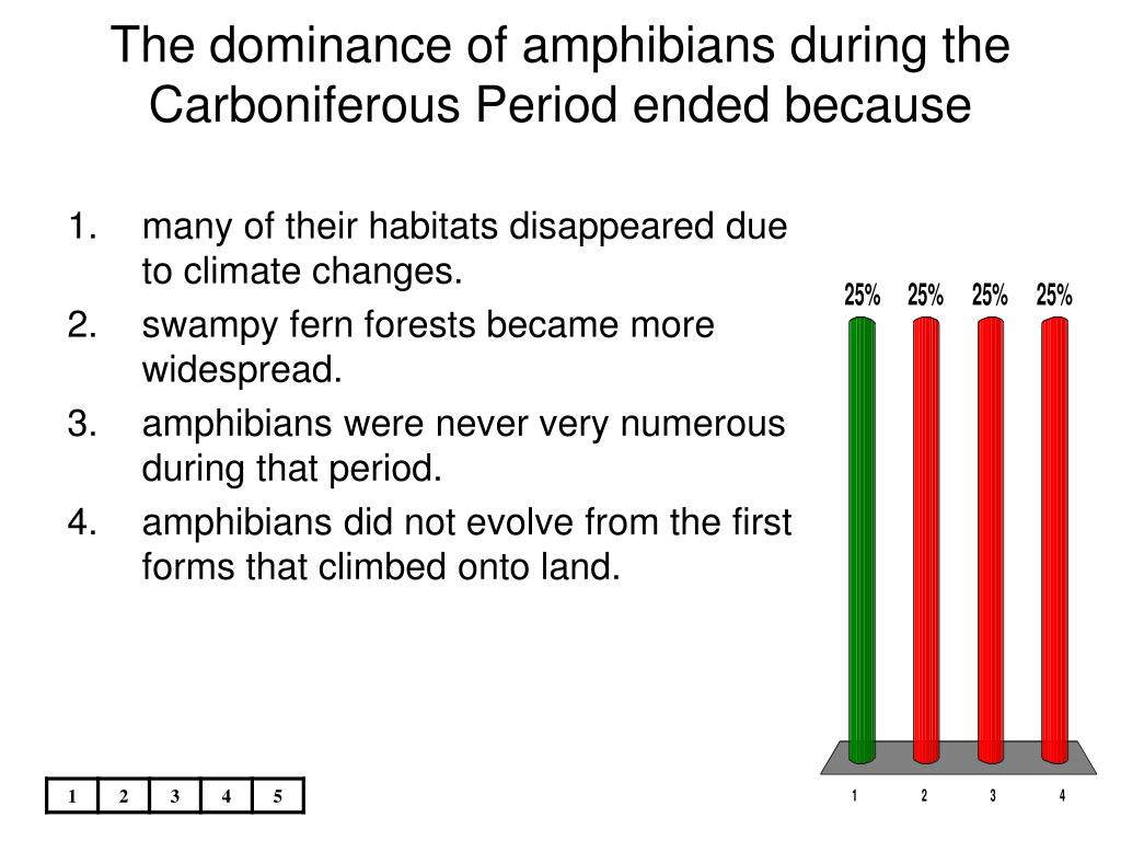 The dominance of amphibians during the Carboniferous Period ended because