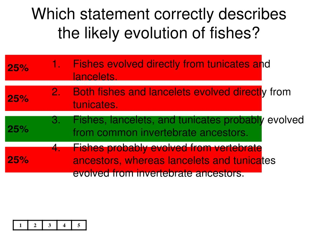 Which statement correctly describes the likely evolution of fishes?