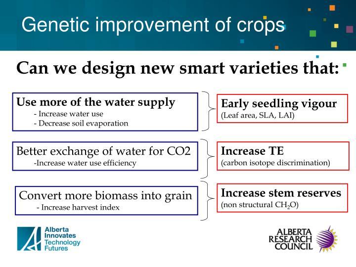 Genetic improvement of crops