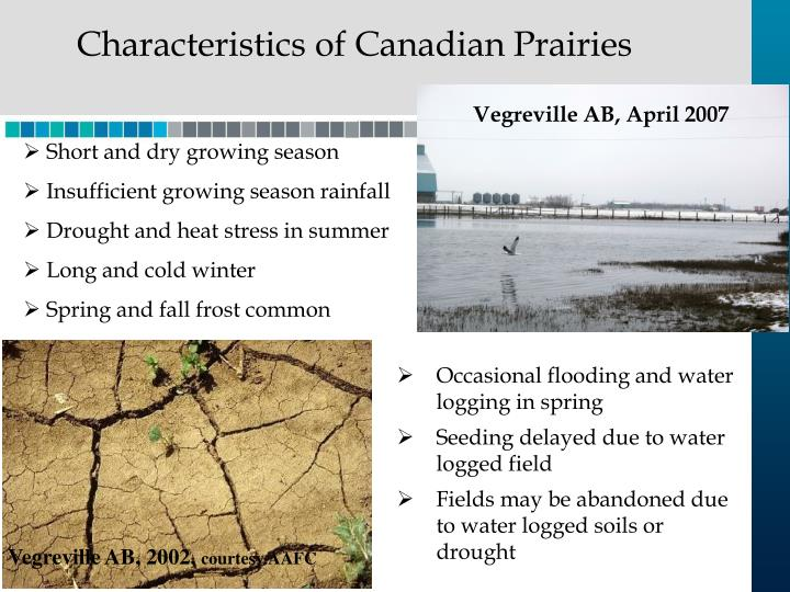 Characteristics of Canadian Prairies