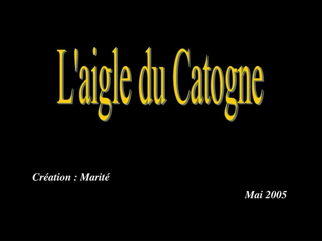 L'aigle du Catogne