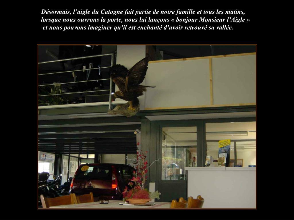 Désormais, l'aigle du Catogne fait partie de notre famille et tous les matins, lorsque nous ouvrons la porte, nous lui lançons «bonjour Monsieur l'Aigle»