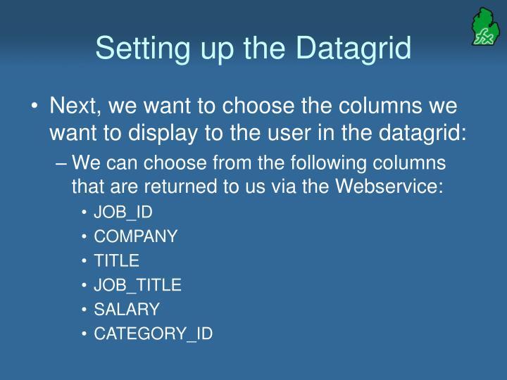 Setting up the Datagrid