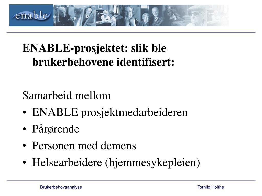 ENABLE-prosjektet: slik ble brukerbehovene identifisert: