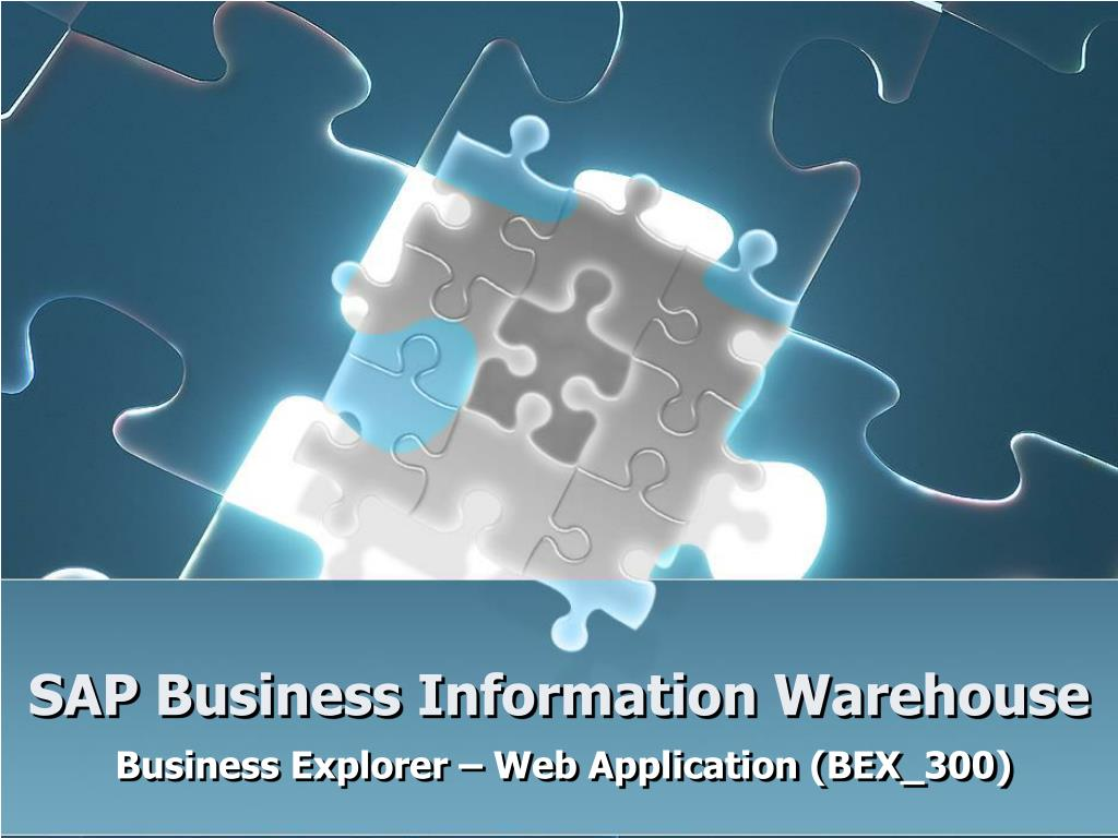 SAP Business Information Warehouse