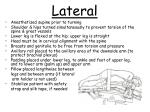 lateral