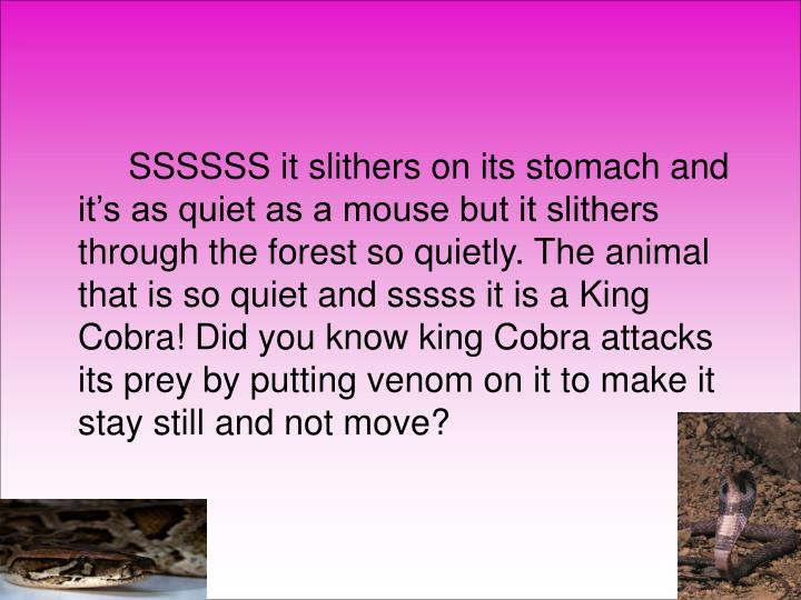 SSSSSS it slithers on its stomach and it's as quiet as a mouse but it slithers through the fores...
