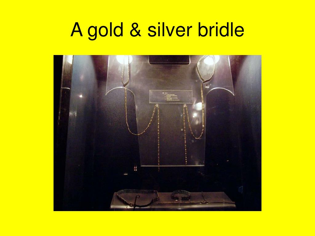 A gold & silver bridle