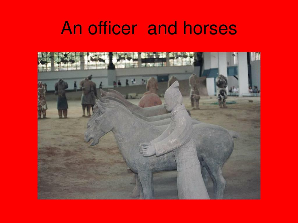 An officer  and horses
