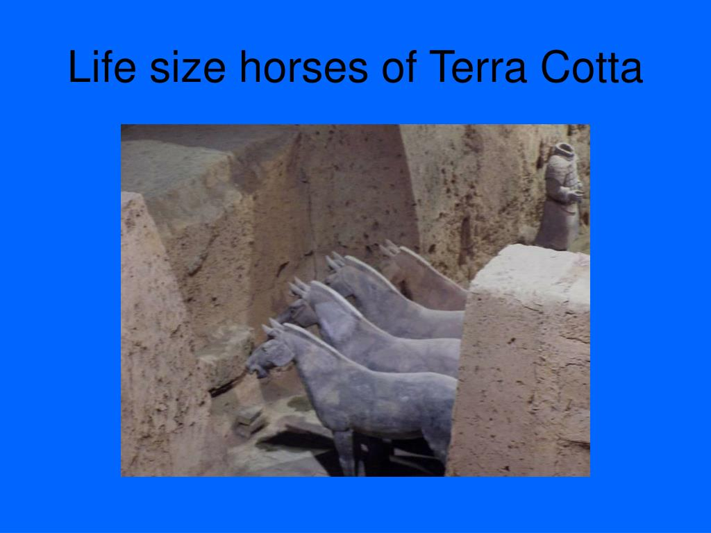 Life size horses of Terra Cotta