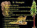 k strategist
