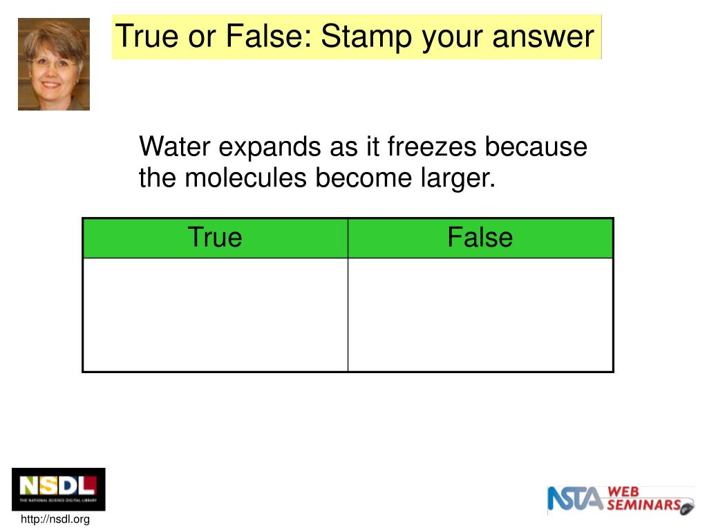 True or False: Stamp your answer