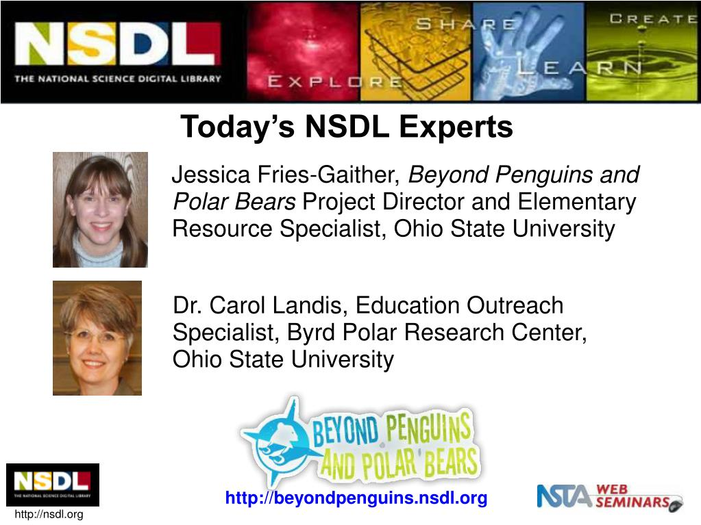 Today's NSDL Experts