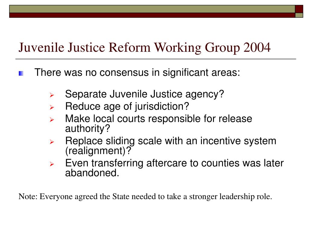 Juvenile Justice Reform Working Group 2004