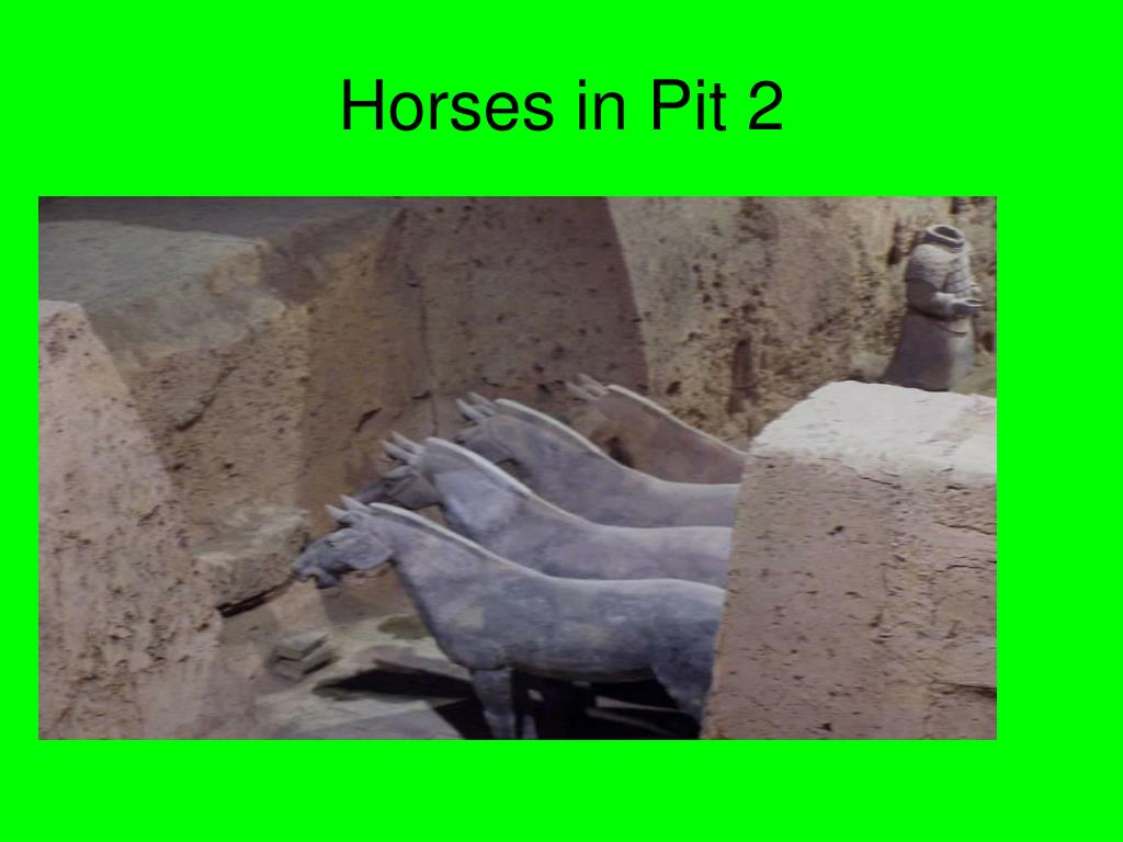 Horses in Pit 2