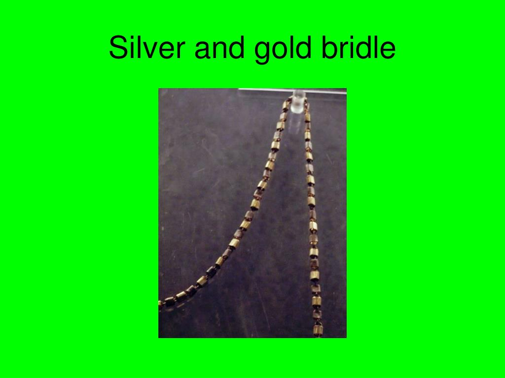 Silver and gold bridle