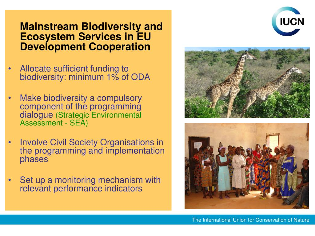 Mainstream Biodiversity and Ecosystem Services in EU Development Cooperation