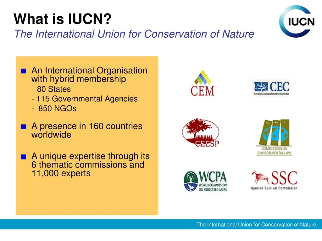 What is IUCN?