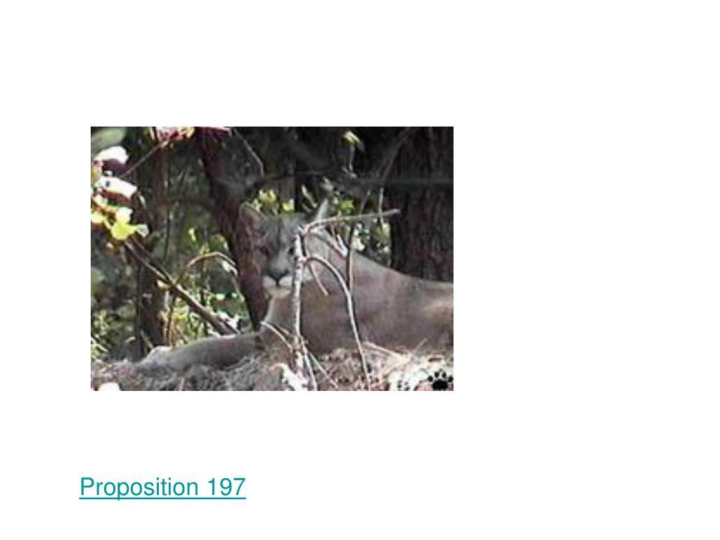 Proposition 197