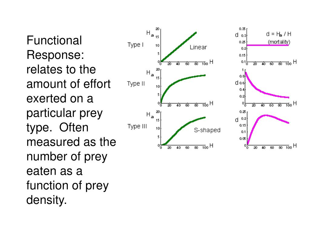 Functional Response: relates to the amount of effort exerted on a particular prey type.  Often measured as the number of prey eaten as a function of prey density.