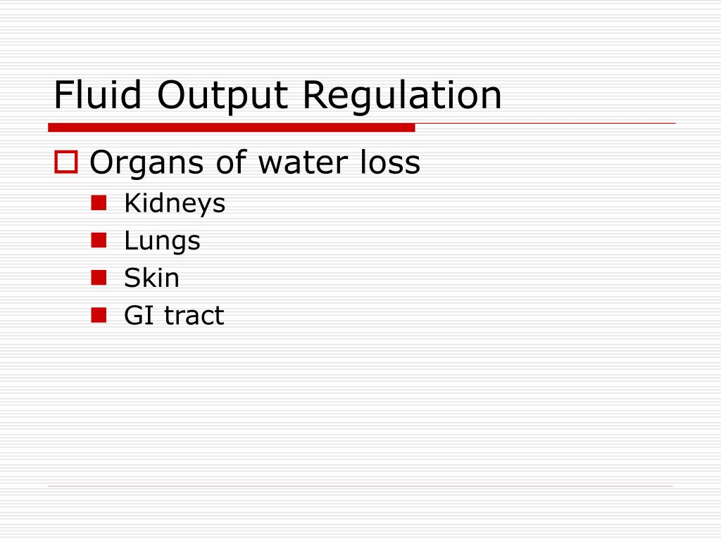 Fluid Output Regulation