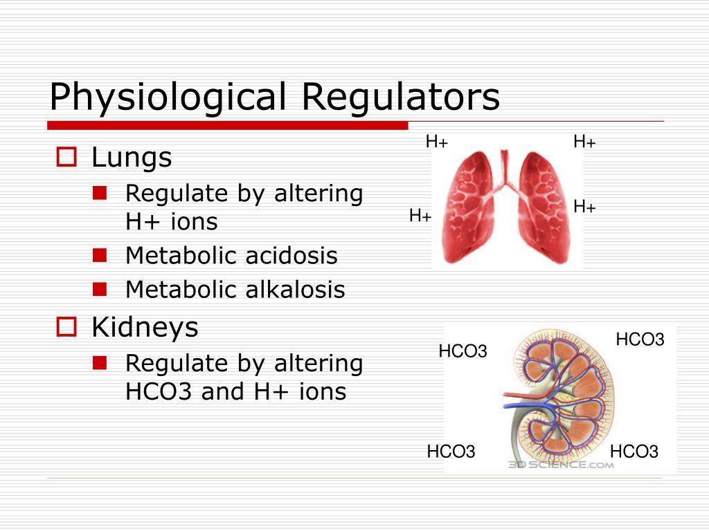 Physiological Regulators