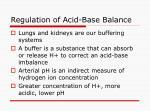 regulation of acid base balance