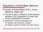 regulation of acid base balance34