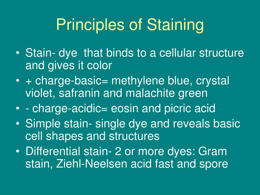 Principles of Staining