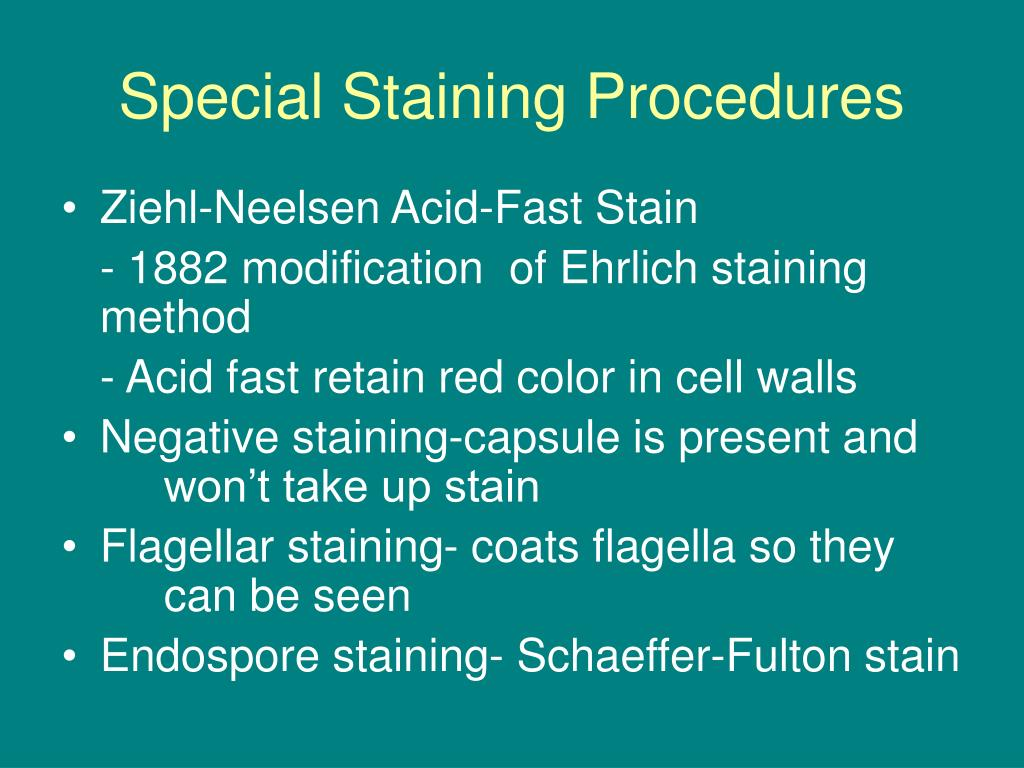 Special Staining Procedures