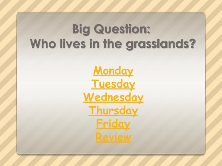 Big question who lives in the grasslands2