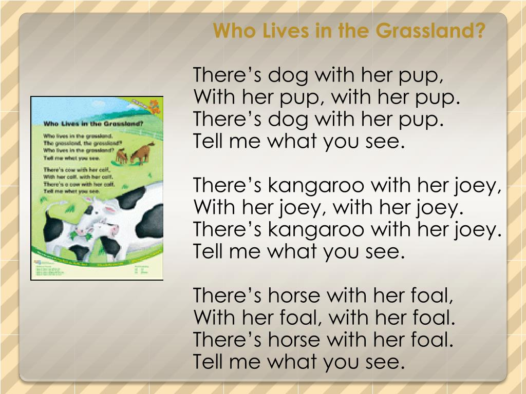 Who Lives in the Grassland?