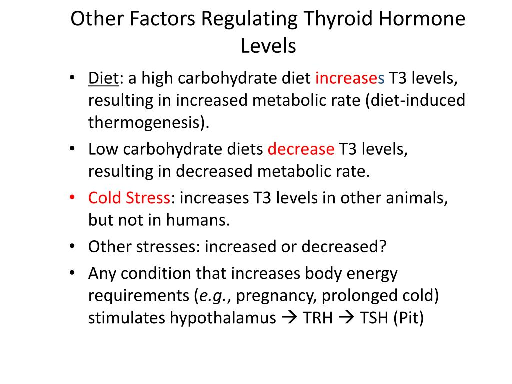 PPT - Production, Regulation, and Action of Thyroid Hormones PowerPoint Presentation - ID:337465