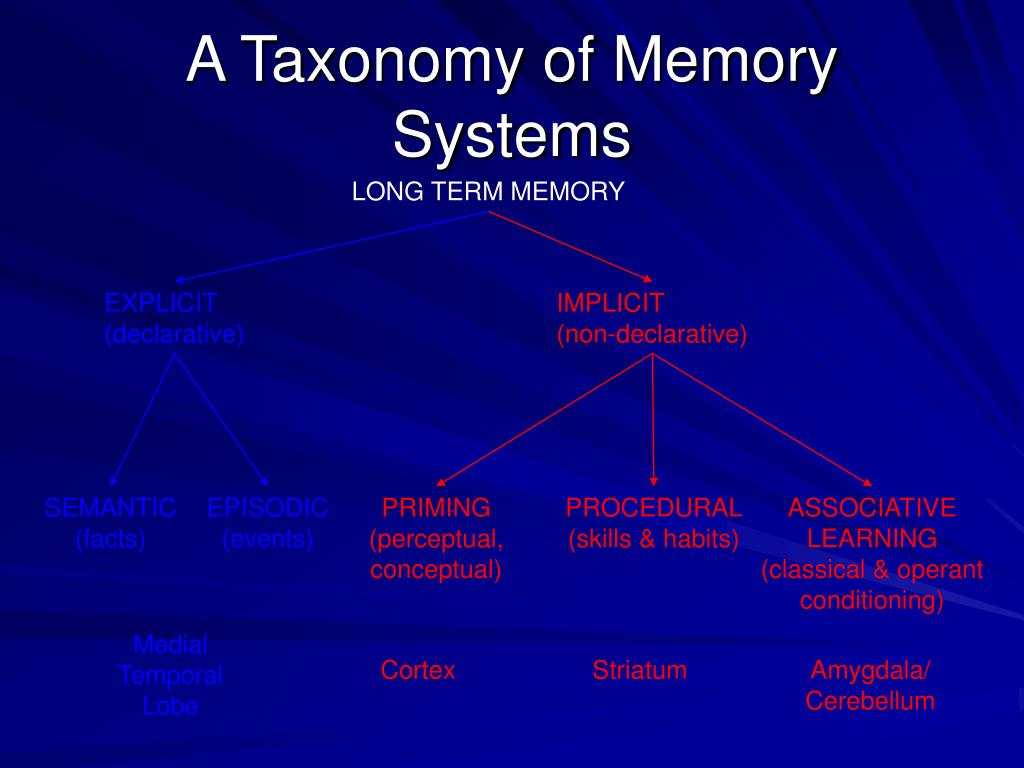 A Taxonomy of Memory Systems