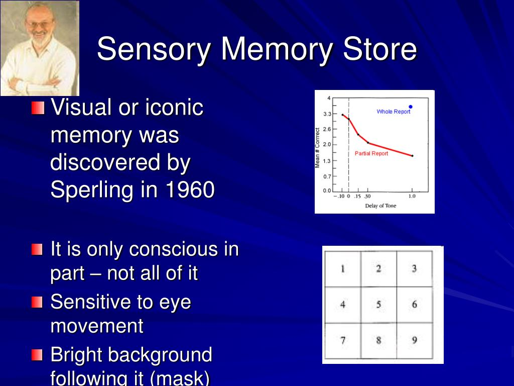 Sensory Memory Store